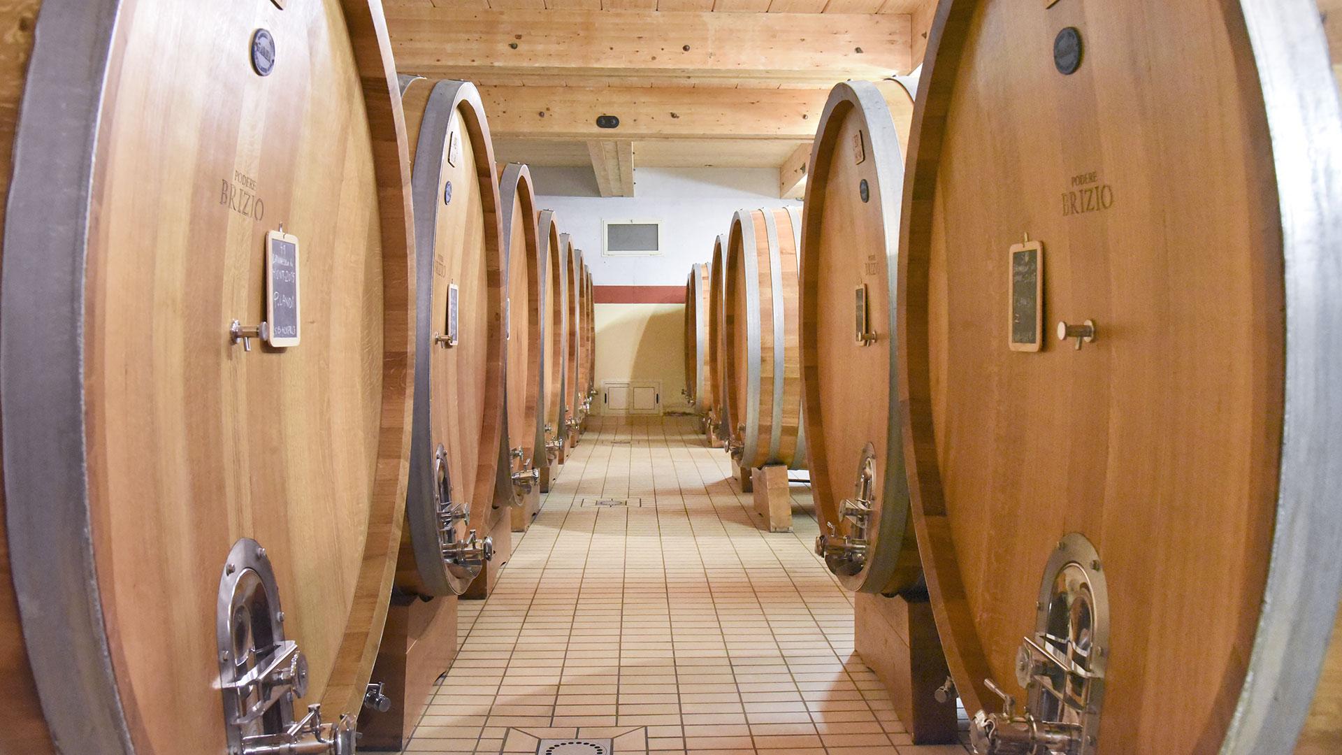 Wines in Podere Brizio